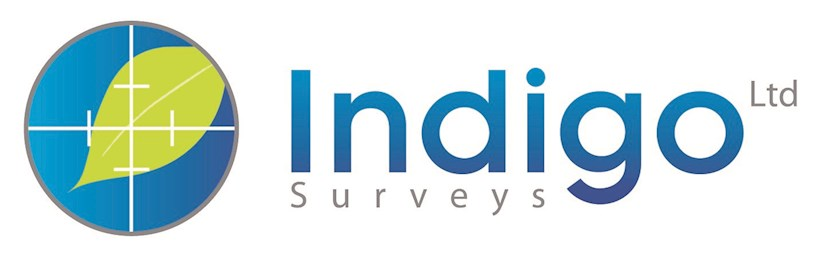 Image for Ellis & Co Case Study: Indigo Surveys Ltd