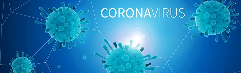 Image for The Coronavirus Large Business Interruption Loan Scheme (CLBILS) update